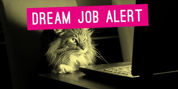 Dream job Alert